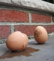 ความรู้สึกของการเป็นไข่ ขำขำ?นะจ๊ะ