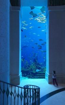 โรงแรมใต้น้ำ ที่ดูไบสวยมาก