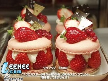 ~ @ Cake ญี่ปุ่น @ ~