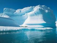 โลกใต้ทะเลขั้วโลกเหนือ