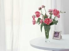 Lⓞⓥⓔⓛⓨ Floral Design•:*´¨`*:•.(o^.^o)