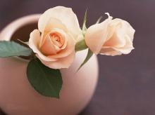 Lovely Floral Design •:*´¨`*:•. ღ ღ ღ 2