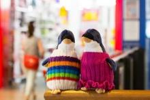 เพนกวินในเสื้อสเวตเตอร์สีสันสดใส