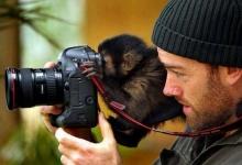 น่ารักป่ะ? เมื่อสัตว์โลกเป็นช่างภาพ