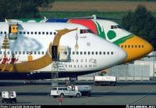 Amazing  Airline...