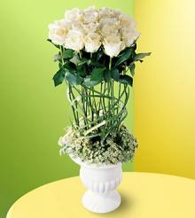 จัดดอกไม้สไตล์ Topiary ..2