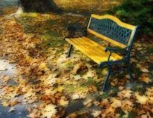 ใบไม้ร่วงในความทรงจำ