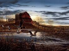 ***ภาพวาดนกเป็ดน้ำ สวยๆ ค่ะ ^^***