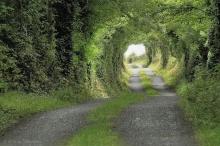 ทุกเส้นทาง.....ย่อมมีจุดหมาย