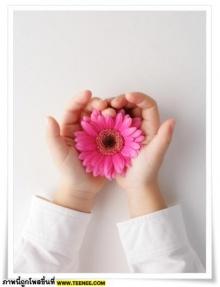 *~o ภาพสวยๆ สีชมพู o~*