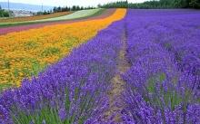 Incredible Landscapes •:*´¨`*:• <( ̄︶ ̄)/