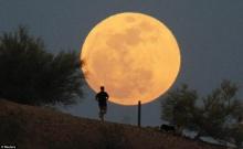 รวมภาพ พระจันทร์ดวงโต (Super Moon)