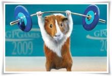 หนูน้อยกับกีฬาโอลิมปิค