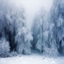 บรรยากาศหนาวๆกับรูปสวยๆ