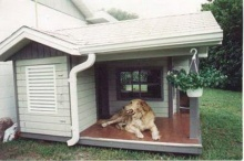 บ้านน้องหมาสุดไฮโซ