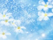 ดอกไม้...กราฟฟิค...ชอบไม๊  ^__^