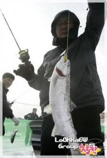 มหกรรมตกปลาใต้ธารน้ำแข็ง@เกาหลี