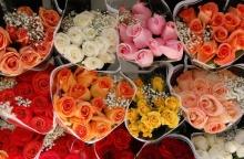 ดอกกุหลาบหลากสี......สำหรับคนเกิดวันศุกร์