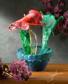 ระเบิดสี พุ่งกระจายเป็นภาพดอกไม้ ถ่ายด้วยกล้องความไวสูง