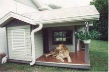 หมาไฮโซเค้าอยู่กันแบบนี้