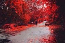 ธรรมชาติสีแดงที่สุดแห่งความอลังการ