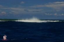 ช๊อตต่อช๊อต - เกาะเกิดใหม่