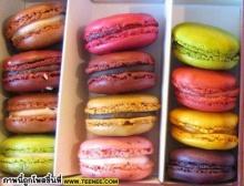 macarons สีสันสดใส น่าทานมากกกกกก