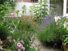 มุมกับสวนดอกไม้สวย ๆ
