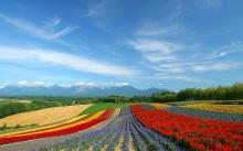 Incredible Landscapes •:*´¨`*:• <( ̄︶ ̄)/ 2