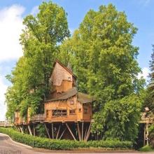บ้านต้นไม้ที่ใหญ่ที่สุดในโลก