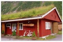 หลังคาบ้านที่มีหญ้า