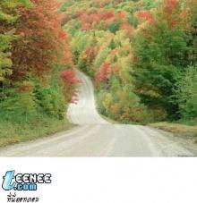 10 beautiful roads