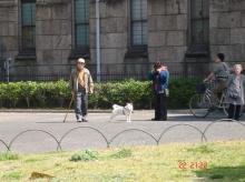 ที่ญี่ปุ่นเค้าก็รักหมากันนะ