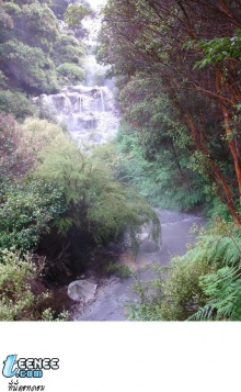 Waterfall Wallpaper (L Lawlite)