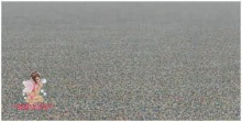 ทะเล ขวดพลาสติก