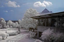 @ Best Infrared Photography @