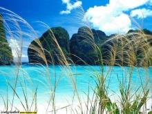 ทะเล้ มะเล~