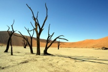 ทะเลทรายแห่งนามิเบีย