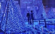 งดงามกับต้นคริสต์มาส จากทั่วโลก