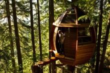 บ้านต้นไม้สุดโรแมนติกในธรรมชาติ
