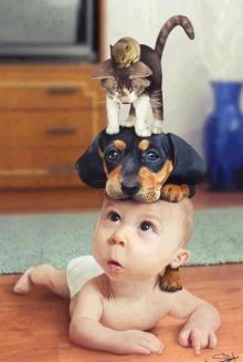 สัตว์โลกน่ารัก !!