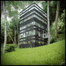 บ้านป่าที่ญี่ปุ่น