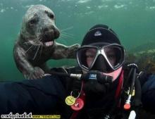 สัตว์กับหลากหลายอารมณ์ สุดยอด!!