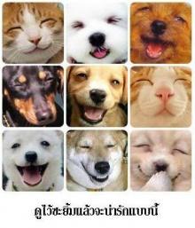 วันนี้..คุณยิ้มแล้วหรือยัง ^___^