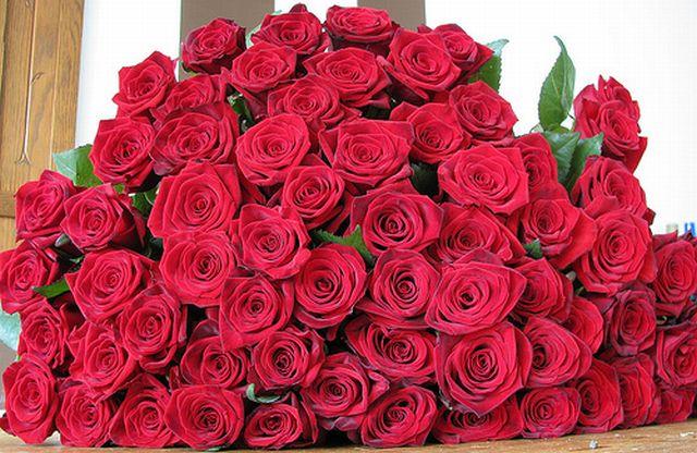 กุหลาบสีแดง หมายถึงความรัก ความปรารถนา เป็นสิ่งนำโชคมาให้แก่หญิงหรือชายที่รับ