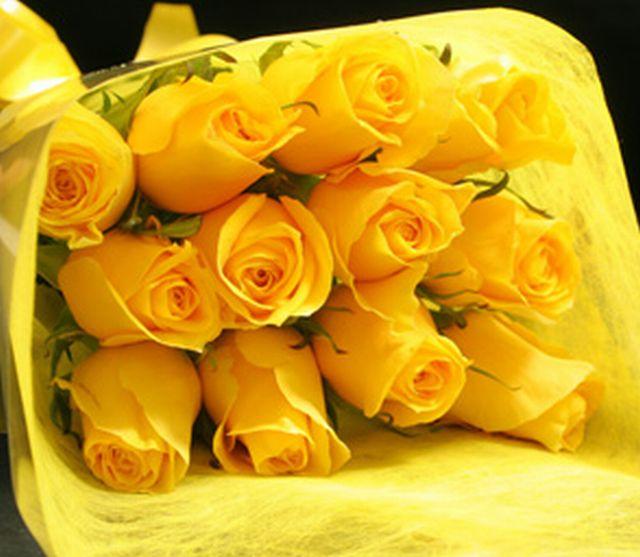 กุหลาบสีเหลือง หมายถึง มิตรภาพ เราเป็นเพื่อนที่ดีต่อกัน