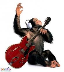 ดนตรีในหัวใจ