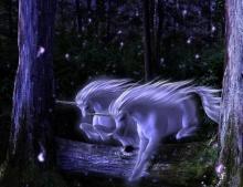 Unicorn.. ม้ามีเขาในเทพนิยาย