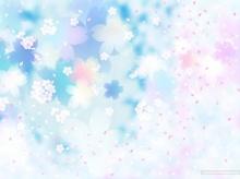 ภาพวาด.. ซากุระ