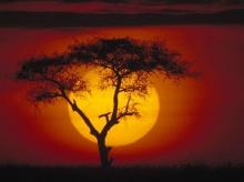 ธรรมชาติ.. จากหลายมุมทั่วโลก
